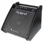 Roland PM 100